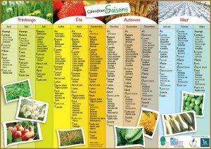 apercu-tableau-legumes-saison